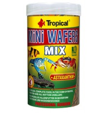 Tropical - Mini Wafers Mix
