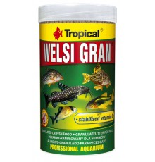 Tropical - Welsi Gran